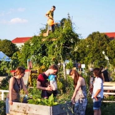 Stadtgrün - Urban Learning Labs for Climate Adaption