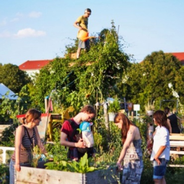 Stadtgrün für Stuttgart – urbanes Lernlabor zur Klimawandelanpassung