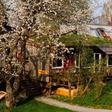 Außenansicht des Studierendenwohnheim Bauhäusle, Holzhütte mit Bäumen