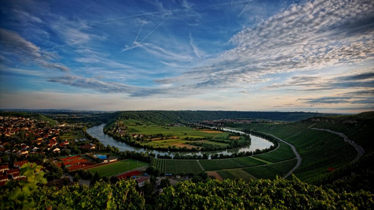Blick über den Neckar und die Weinberge bei Mundelsheim